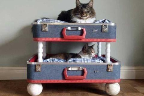двухэтажный домик из чемоданов