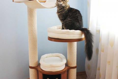 домик с когтеточками и двумя котами